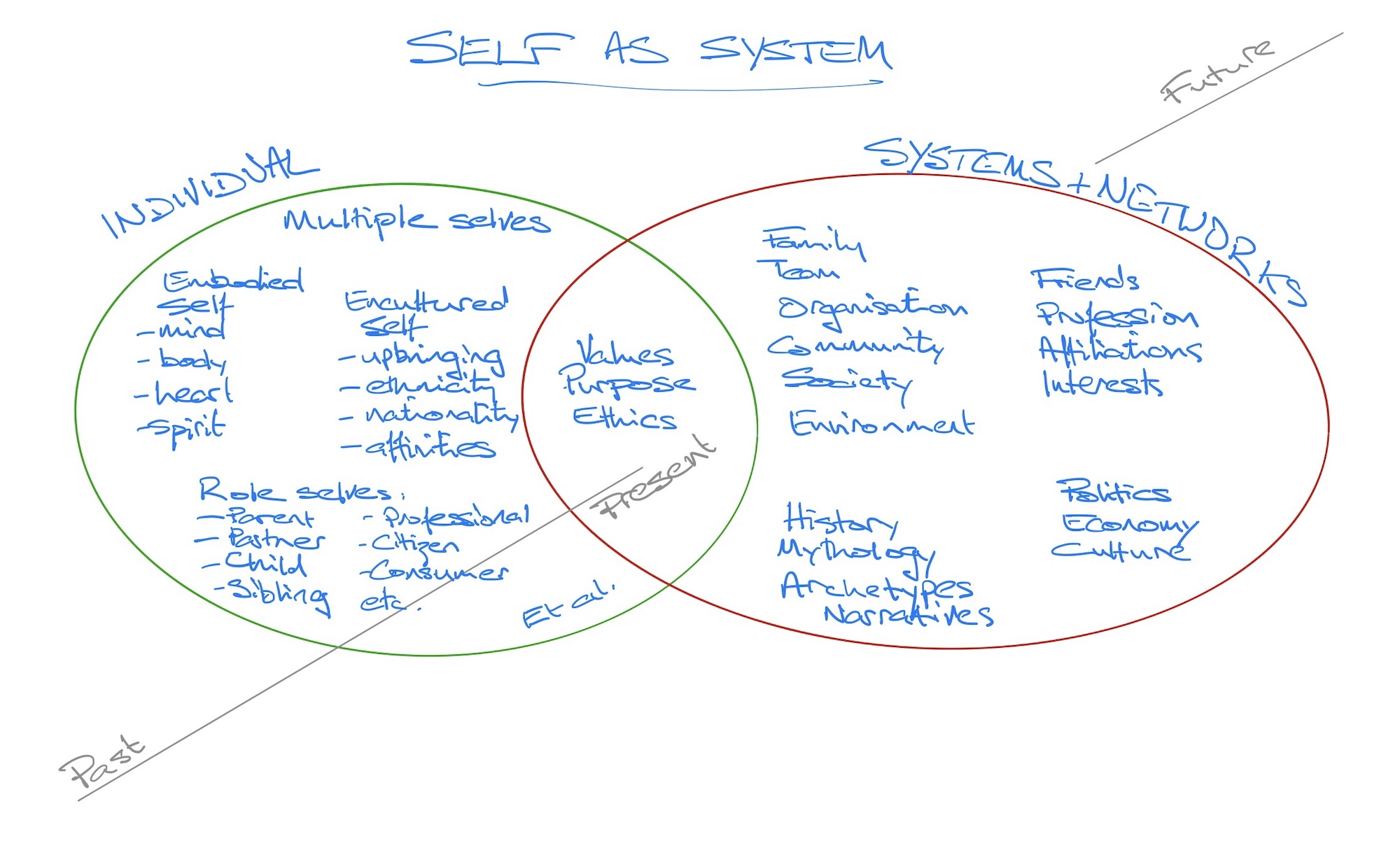 self-as-system
